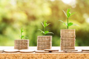 Kärntnerland Harmonika - Geldhaufen wachsende Pflanzen